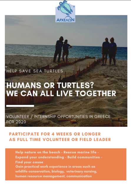 Sea Turtle Conservation in Greece 1