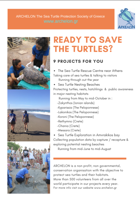 Sea Turtle Conservation in Greece 2